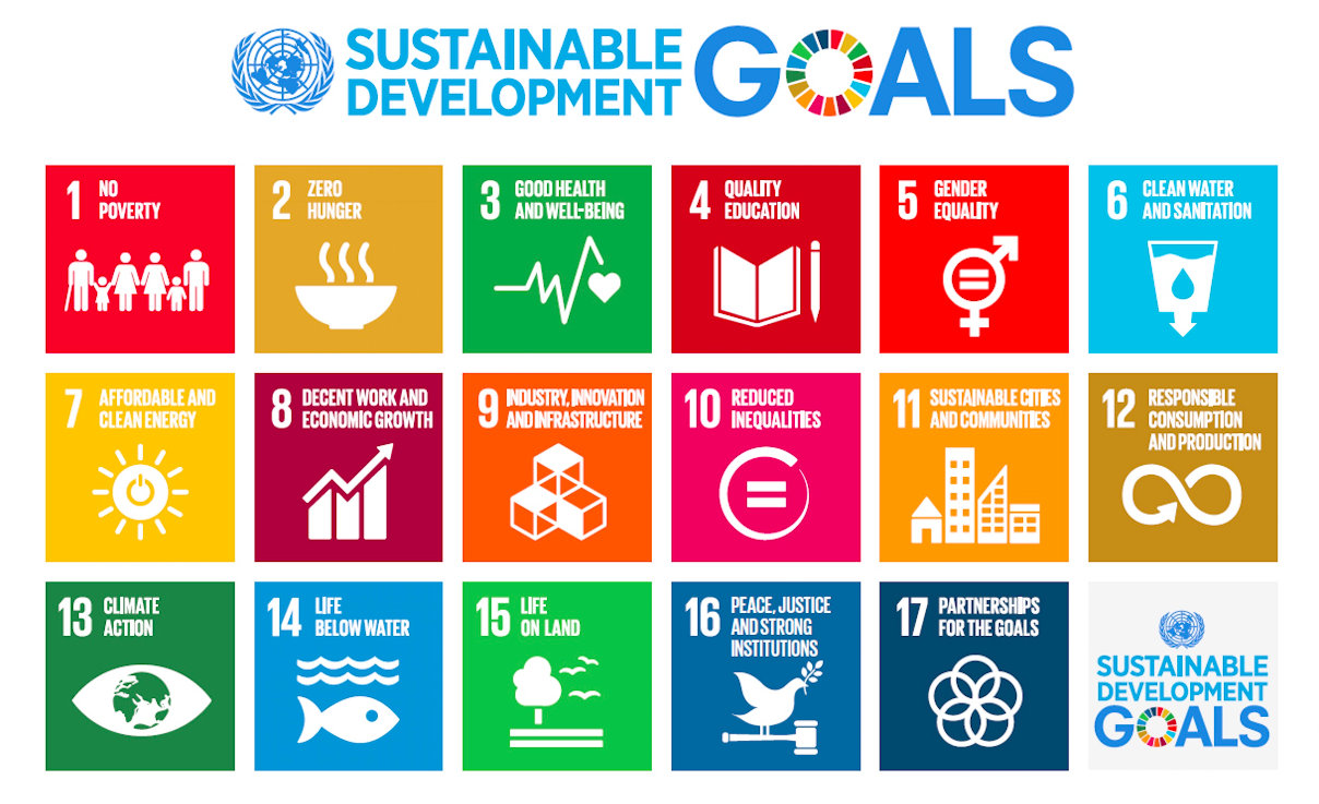 sustainable everis